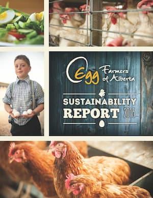 2015-Sustainability_Report