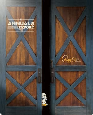 2017-Annual_Report