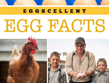 Eggscellent_Egg_Facts-370x284
