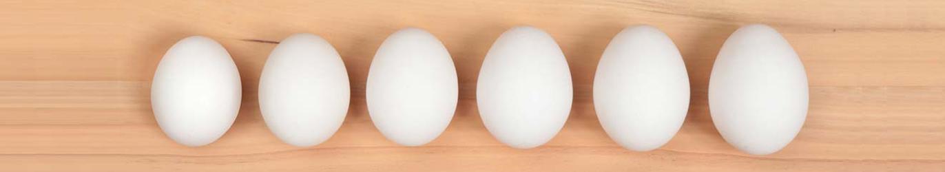 Eggs-Sizes_Banner